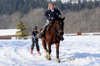 Ski et luge joëring