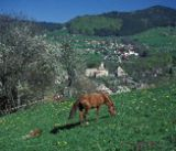 haberes-lullin-village vallee verte