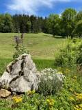 vue-jardin-41178