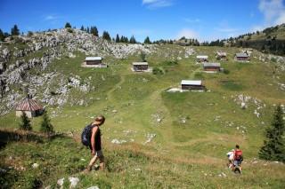 Alpage de Nifflon